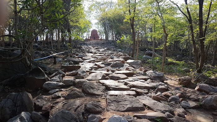 The pathway to the temple.