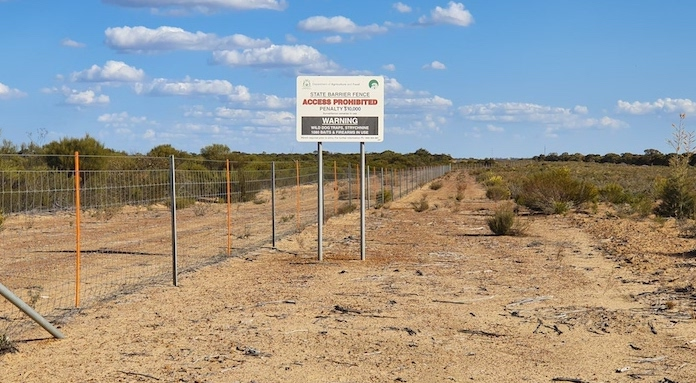 Yellowdine State Barrier Fence
