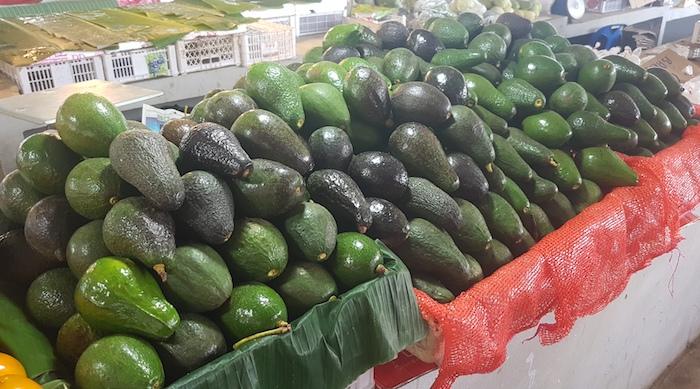 Avocadoes were in abundance.