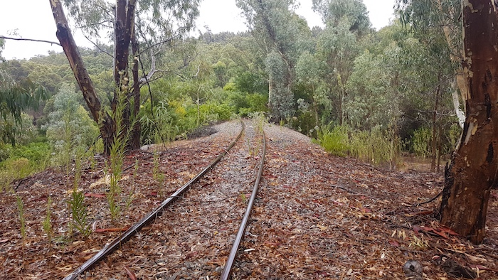 The railway is pretty much overgrown although the service track is accessible.