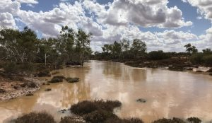 Murchison River at Manfred.