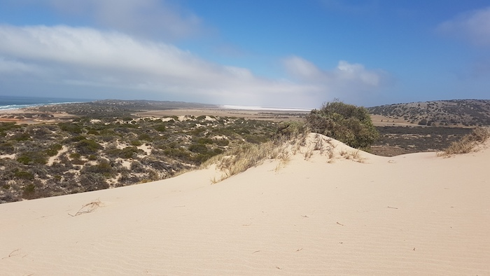 Part of the Horrocks dune system.