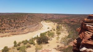 The Murchison River at The Loop.