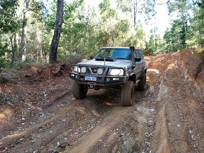 Track off Big Tree Road.