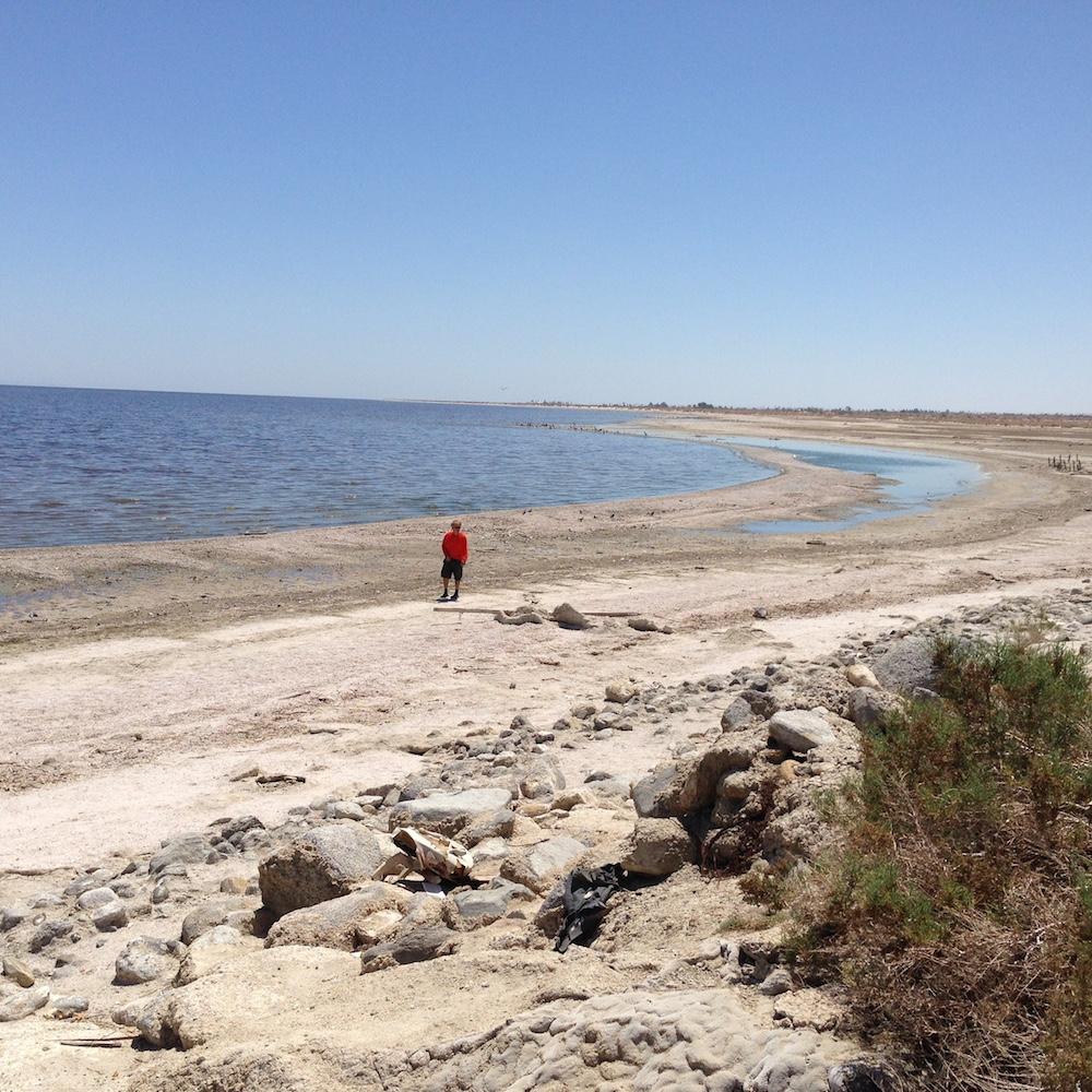The sad vista of today's Salton Sea.