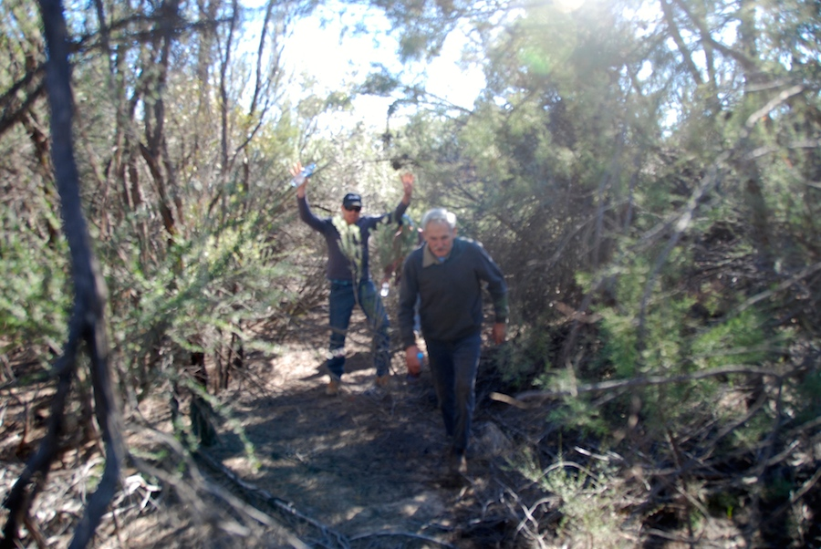 Dan and Cliff pushing through the thickets.