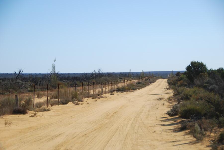 Holland Track alongside the State Barrier Fence.