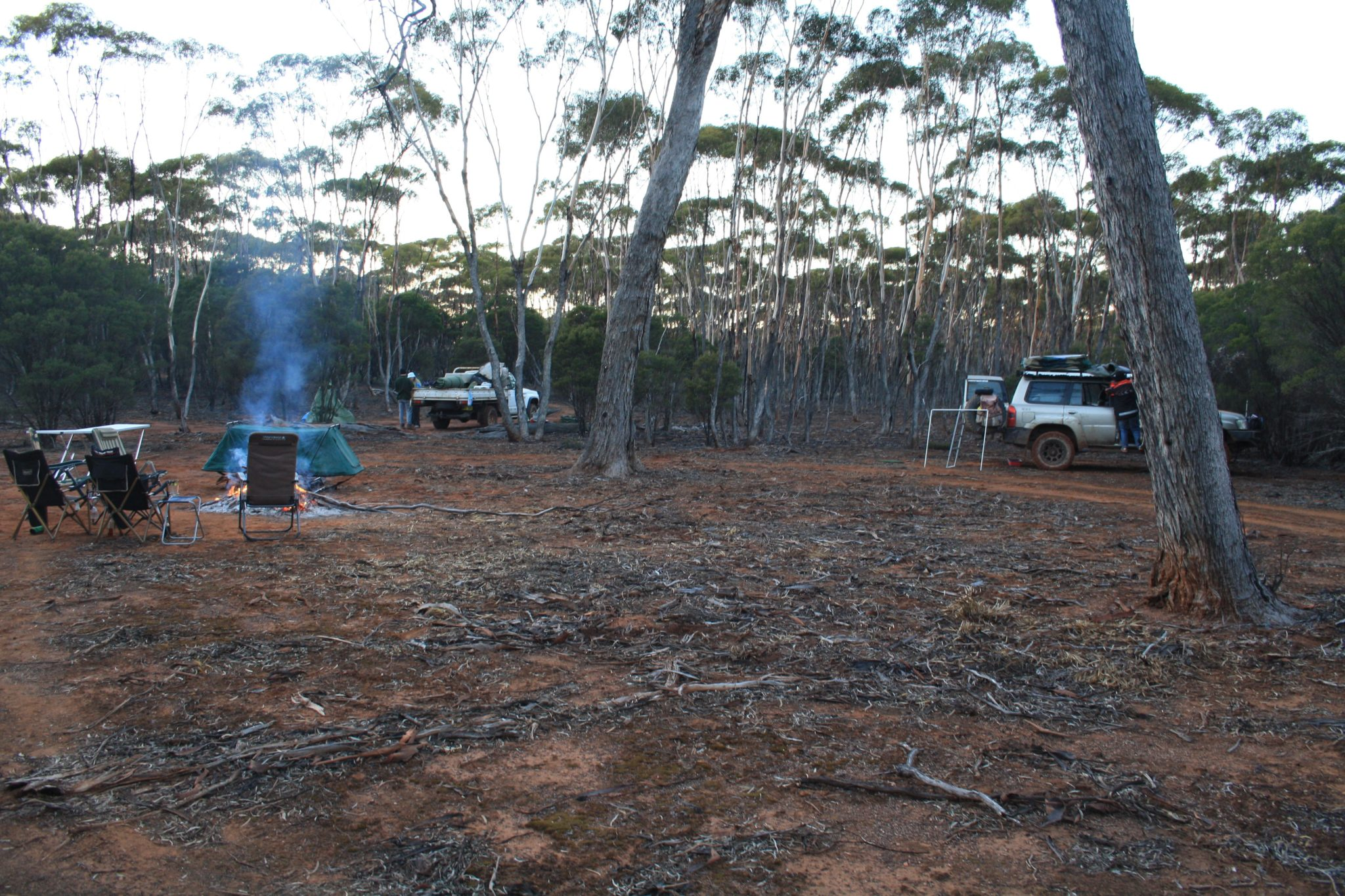 Campsite seven kilometres east of Mount Holland.